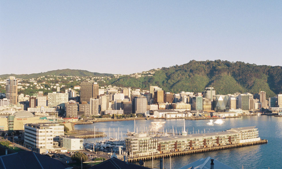 Chaffers Marina and Wellington City with the Kelburn and Wadestown Hills in the background on a sunny day.